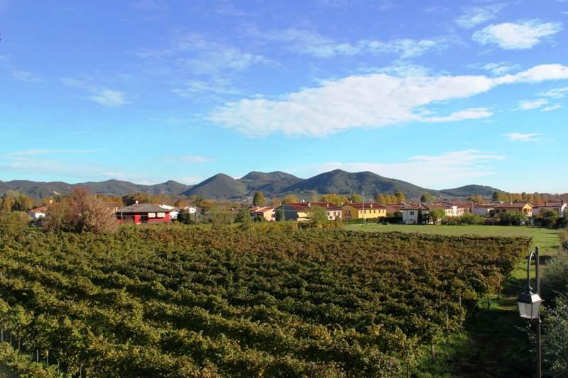 Terreno in Vendita a Galzignano Terme