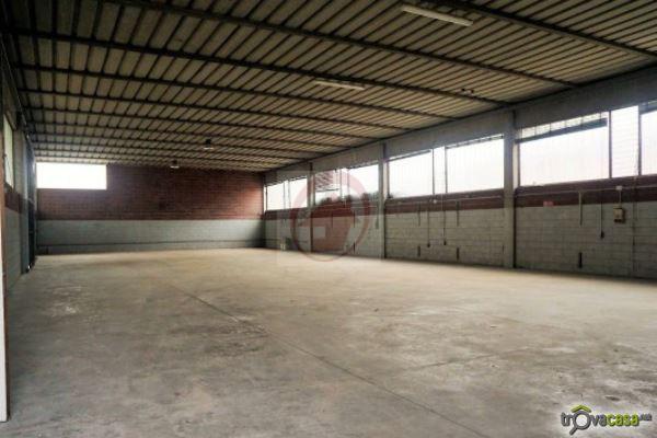 CAPANNONE ARTIGIANALE VILLAFRANCA PADOVANA - https://images.gestionaleimmobiliare.it/foto/annunci/130624/366957/800x800/000__capannone_industriale-in-affitto-a-montichiari_wmk_0.jpg