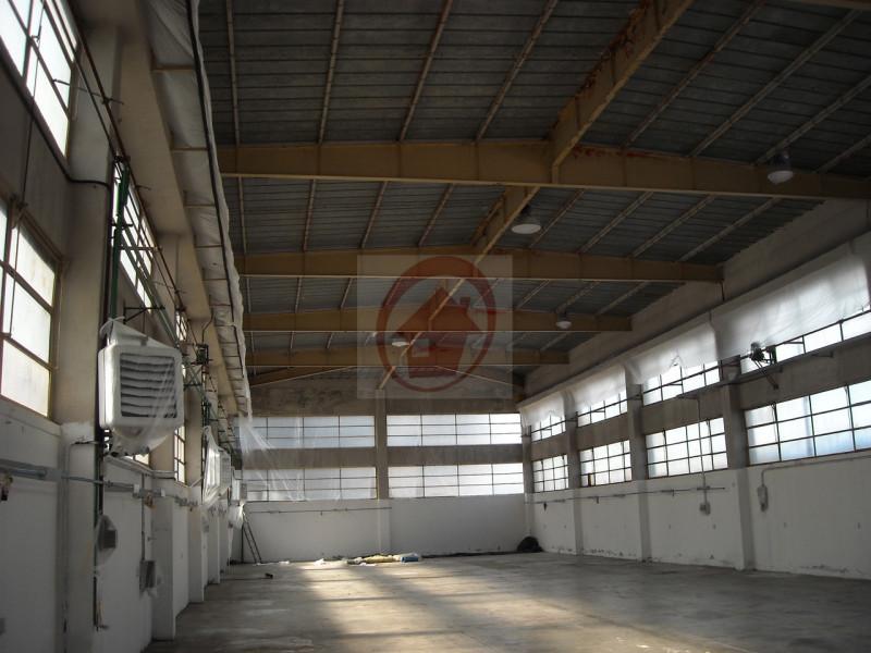 CAPANNONE ARTIGIANALE VILLAFRANCA PADOVANA - https://images.gestionaleimmobiliare.it/foto/annunci/130624/366957/800x800/002__foto_capannone_wmk_0.jpg