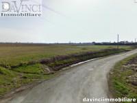 Vigonovo: loc. Pava 7320 mq ca di terreno agricolo, senza possibilità edificatoria.