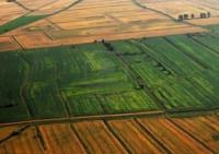 Terreni agricoli