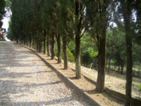 Montevarchi villa posizione panoramica vicina al centro