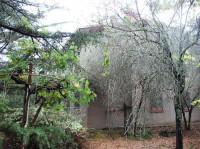 Nel comune di Bucine vendesi casa indipendente,