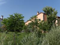 Abitazione singola con terreno agricolo a Sossano