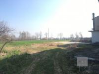 San Giorgio in Bosco (PD) vendesi casa singola con stalla e terreno di 5.000 mq.