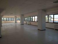 LIMENA, PADOVA Ovest, Uffici in Affitto, Disponibili Mq 3000 o Frazioni 300/500/1000