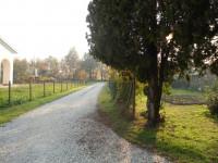 CERVARESE SANTA CROCE (PD) PORZ. DI RUSTICO CON 8,5 CAMPI AGRICOLI