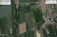 Terreno in vendita a Bagnaria Arsa