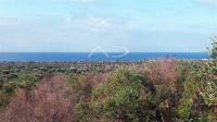 Puglia,Salento,Lecce,Torre Suda vendesi trulli su uliveto di 5800mq