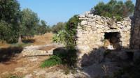 Puglia,Salento,Lecce,Gallipoli,Racale,Torre Suda vendiamo trullo su uliveto di 6194mq