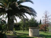 Villa con piscina in ottima zona