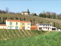 Asolo - Rustico con Terreno - Progetto Approvato