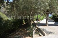 Villetta Terra-Tetto