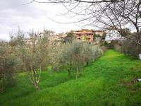 Area edificabile per uso residenziale a Torrita di Siena (SI)