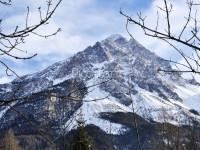 San Vito di Cadore - Panoramica Villa immersa nel Verde - Vendita