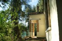 Casa singola da ristrutturare con uliveta, in vendita Palaia Pisa