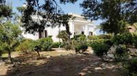 Puglia,Lecce,Salento,Torre Suda Villa con accesso diretto sul mare e giardino mq 3500