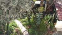 Forte dei Marmi - centrale villa singola di gusto con giardino