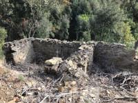 Scansano, Grosseto: Ruderi e terreno