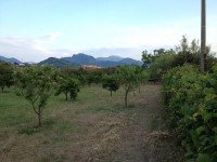 Terreno in vendita a Milazzo
