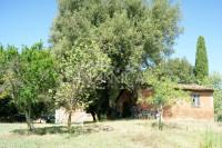 Porzione di casale con 3 annessi e terreno