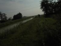 Dietro gli alberi fra rivoli d'acqua….