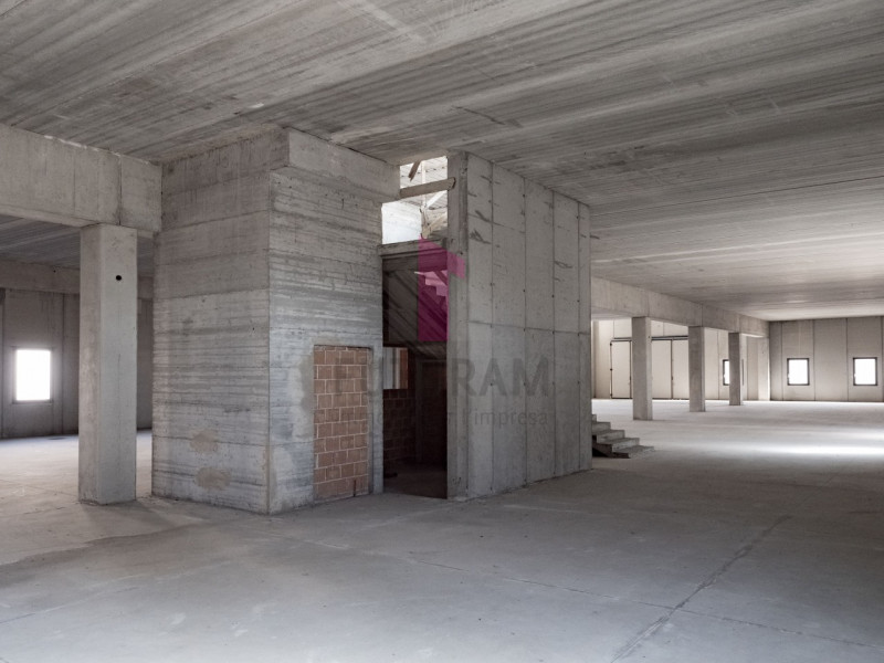 Capannone in affitto a Zimella - https://images.gestionaleimmobiliare.it/foto/annunci/191011/2080989/800x800/007__7_risultato.jpg