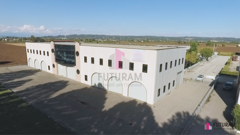 Capannone in affitto a Zimella, 2 locali, prezzo € 4.000 | CambioCasa.it