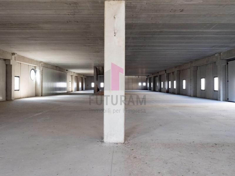 Capannone in affitto a Zimella - https://images.gestionaleimmobiliare.it/foto/annunci/191011/2081017/800x800/006__6_risultato.jpg