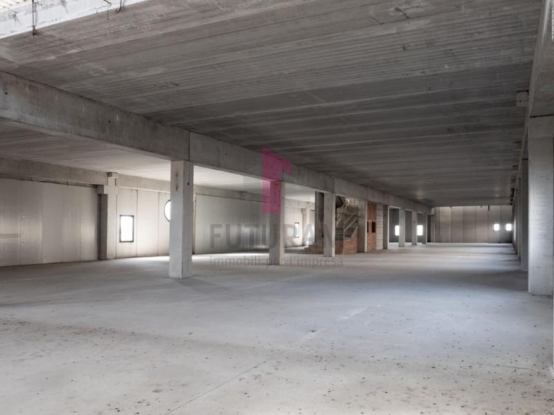 Capannone in affitto a Zimella - https://images.gestionaleimmobiliare.it/foto/annunci/191011/2081017/800x800/014__9e_risultato.jpg