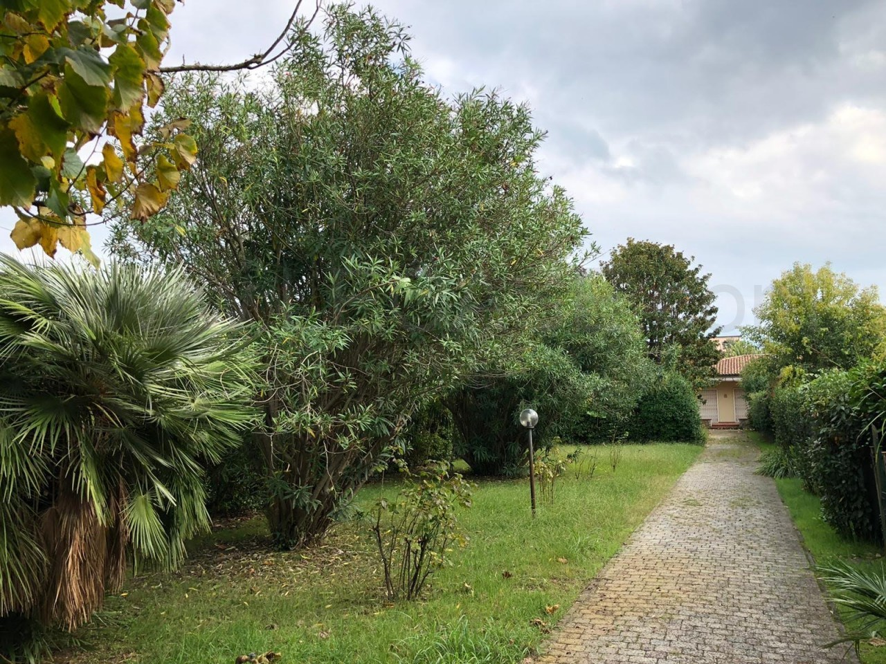 Villa singola con lotto adatto a piscina vicino al mare a Forte dei Marmi
