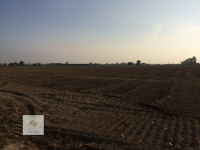 Terreno agricolo con annesso rustico