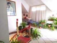 TAGLIO DI PO: Casa singola con laboratorio artigianale