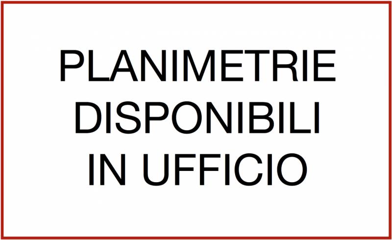 CAPANNONE CON SCOPERTO A MELLAREDO DI PIANIGA - https://images.gestionaleimmobiliare.it/foto/annunci/200207/2145115/800x800/024__1_1.png