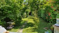 Forte dei Marmi - villa singola giardino posizione meravigliosa