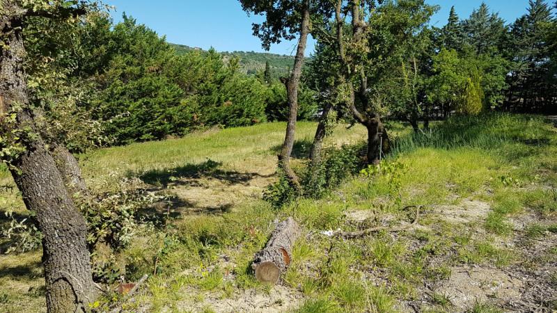 Vendo terreno edificabile residenziale Corciano (PG)
