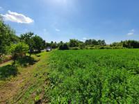 Terreno in vendita a Este