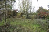 LC28- Palestra con 2 ettaro di terreno