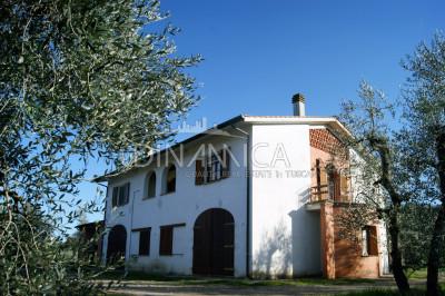 Azienda agricola in vendita, collina Pisa