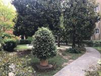 Isola della Giudecca - Riva San Biagio