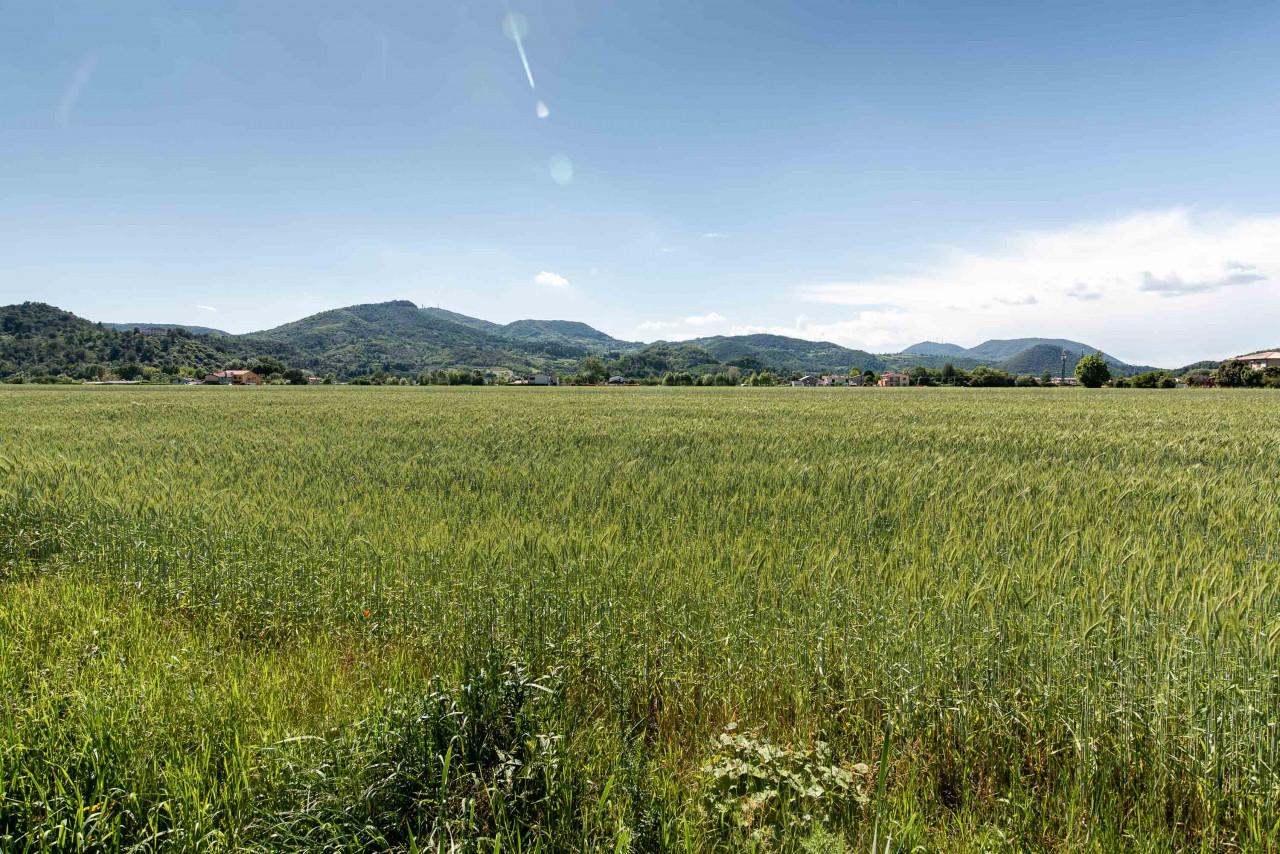 D318 Signorile casa singola con giardino e splendida vista in vendita a Torreglia https://images.gestionaleimmobiliare.it/foto/annunci/210121/2378070/1280x1280/044__blucasa-2141.jpg