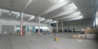Immobile così suddiviso: mq 2.142 ca. di capannone e mq 400 ca. di uffici, tettoia copri ribalta mq.