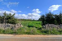 """Gallipoli terreno edificabile in località """"Li Foggi"""""""