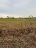 Terreno per attività industriale a Este