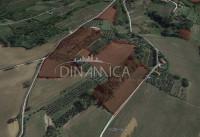 Azienda agricola di 50 ha in val d'era con fabbricati ed attrezzatura