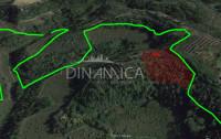 Toscana palaia fienile posizione di crinale. recupero volumetrico