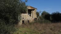 Toscana palaia casolare posizione di crinale. recupero volumetrico