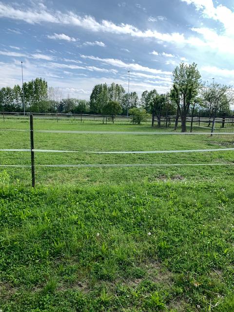 V16 Annesso Agricolo con terreno in vendita ad Abano Terme https://images.gestionaleimmobiliare.it/foto/annunci/210619/2668061/1280x1280/001__img_4383.jpg