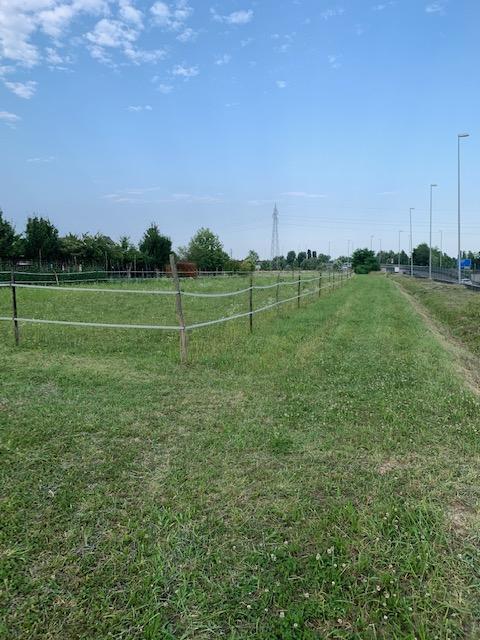 V16 Annesso Agricolo con terreno in vendita ad Abano Terme https://images.gestionaleimmobiliare.it/foto/annunci/210619/2668061/1280x1280/002__img_4697.jpg