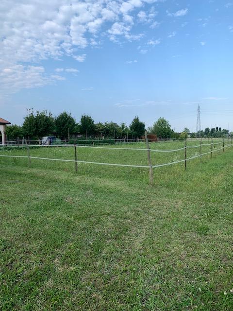 V16 Annesso Agricolo con terreno in vendita ad Abano Terme https://images.gestionaleimmobiliare.it/foto/annunci/210619/2668061/1280x1280/003__img_4698.jpg